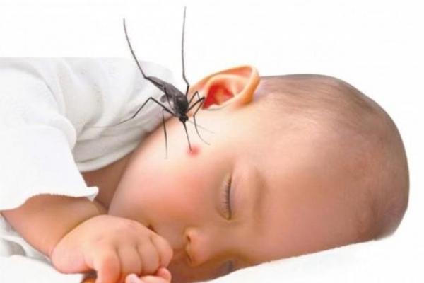 Chăm sóc trẻ bị sốt xuất huyết tại nhà đúng cách