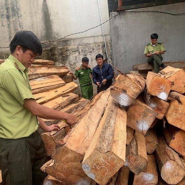 Bám theo 1 xe chở gỗ lậu, lực lượng chức năng phát hiện xưởng gỗ lớn