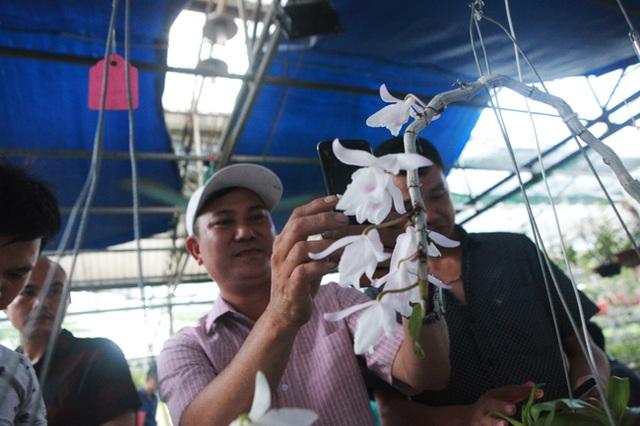 Danh tính đại gia Hà thành chi hẳn 5 tỷ mua bông hoa nhìn như rau muống-6