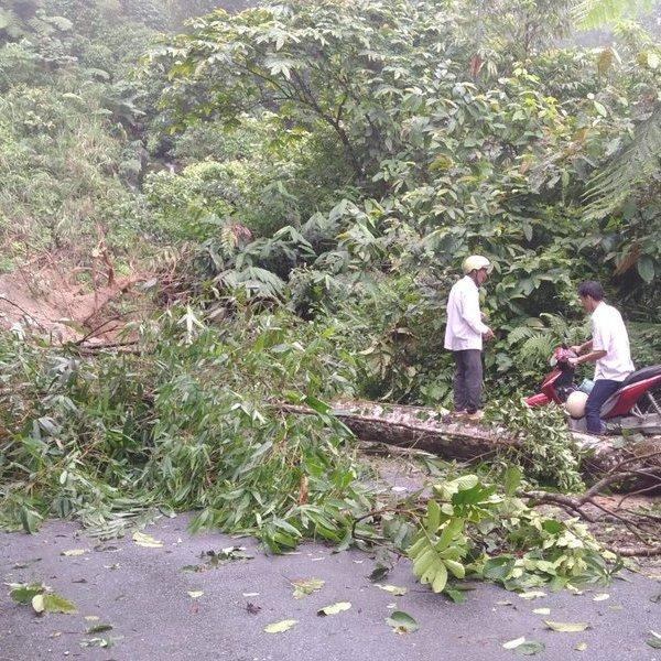 Mưa lớn khiến 64 ngôi nhà của người dân ở Hà Giang bị hư hại