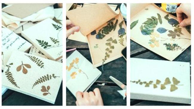 9x làm sổ tay từ lá khô cùng hành trình lưu giữ vẻ đẹp của thiên nhiên