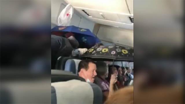 Chuyện hy hữu: Hành khách dùng ô che mưa trên máy bay