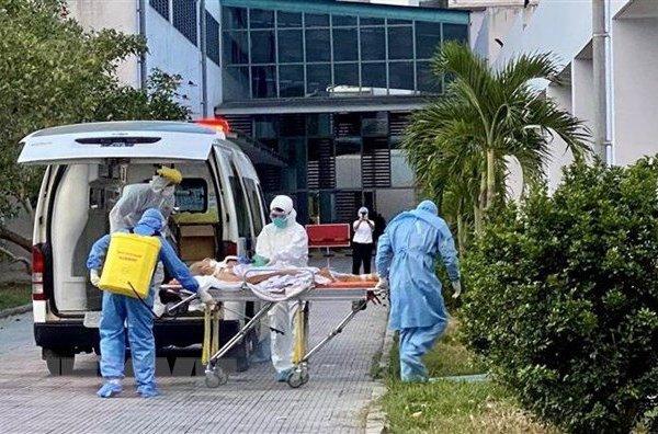 BN 499 tử vong do ung thư đường máu ác tính, viêm phổi nặng và Covid-19