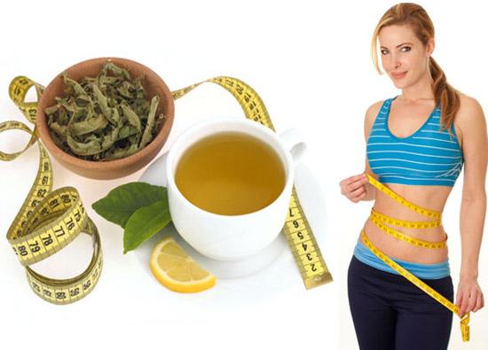 Trà ô long tốt cho sức khỏe, giảm cân