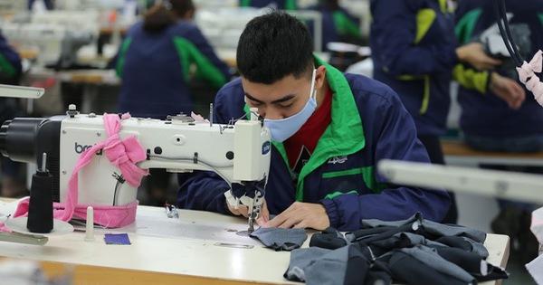 Hỗ trợ học nghề khi tham gia BHTN: Giải pháp cơ bản giúp người thất nghiệp sớm quay lại thị trường lao động