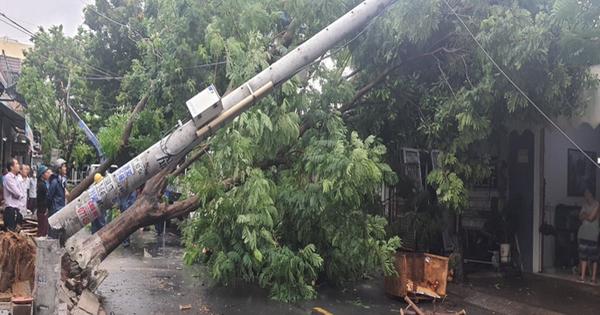 Điện lực Đà Nẵng nói gì về hình ảnh cột điện không lõi gãy ngang trong bão số 5?