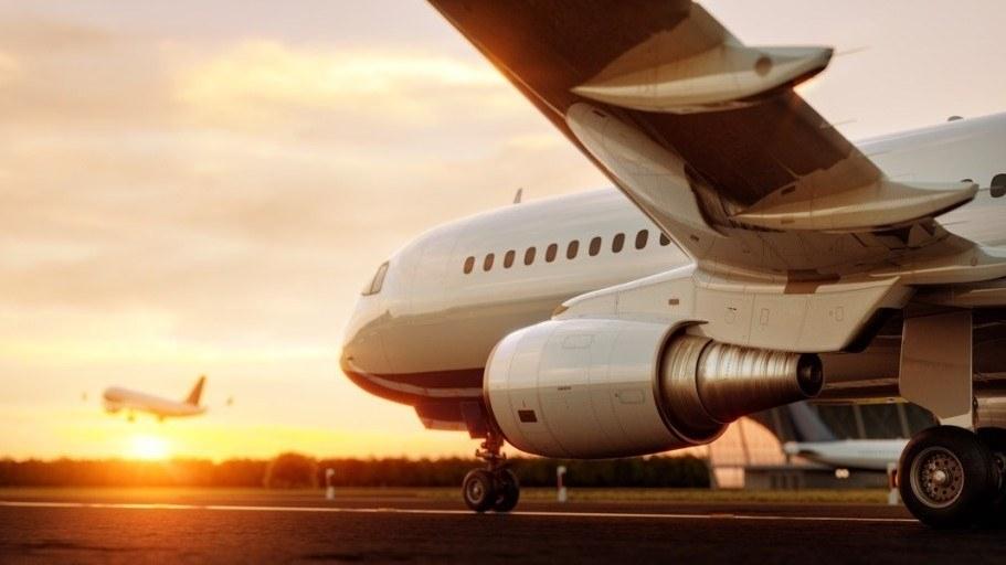 Hãng hàng không luôn bận rộn với người nhập cư và tội phạm ở Mỹ