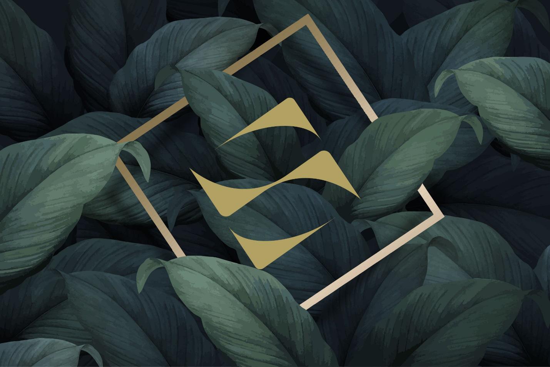 Nâng tầm nhận diện thương hiệu, SonKim Land sẵn sàng cho những bước phát triển nhảy vọt-3