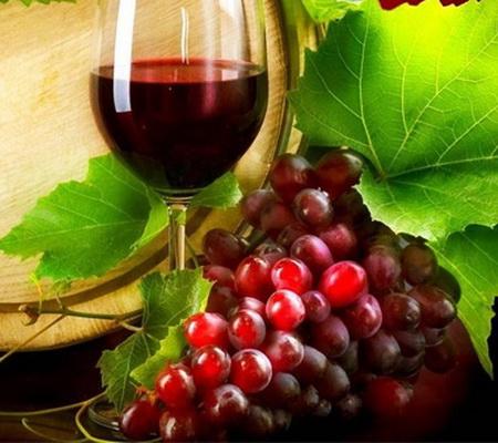 Nho và rượu nho, món quà quý của thiên nhiên-1