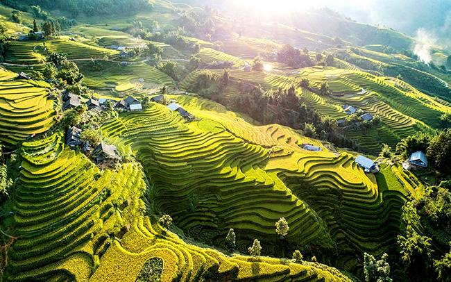 KTS. Phạm Thanh Tùng: Việt Nam có đầy đủ tiềm năng về thiên nhiên và con người để trở thành một quốc gia farmstay-1