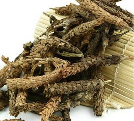 Thuốc và thực đơn chữa bệnh có hạ khô thảo