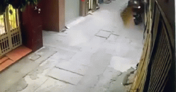 Clip: Lao xe vào cửa nhà hàng xóm, người phụ nữ bị hất văng lên cao rồi ngã xuống đường