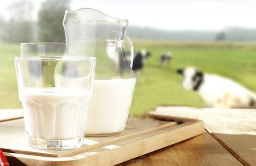 Trẻ bị dị ứng sữa bò, nỗi lo của mẹ-1