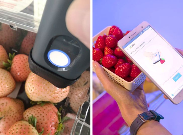 Đi chợ hay siêu thị có 11 cách cực nhanh để nhận biết thực phẩm có phải đồ tươi ngon hay không?-8