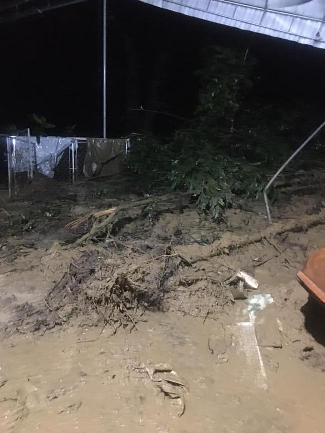 Mưa lớn không dứt, người dân Nghệ An trắng đêm chạy lũ, lên mạng cầu cứu, sáng ra nước đã ngập gần tới nóc nhà-15