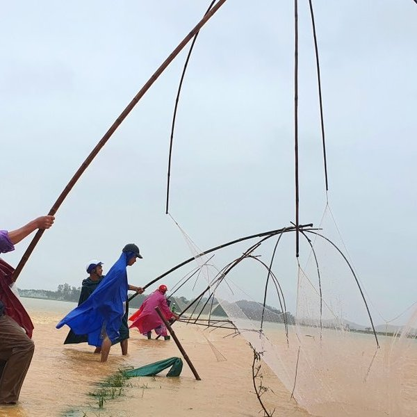 Người dân liều lĩnh đi bắt cá giữa dòng nước lũ