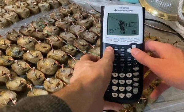 Clip: Dùng 45kg khoai tây để chơi game trên máy tính cầm tay