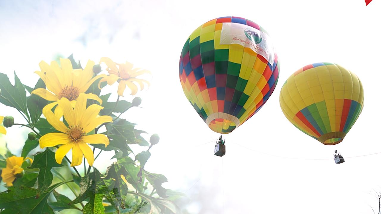 Ngắm biển hoa dã quỳ ở Ba Vì từ khinh khí cầu khổng lồ