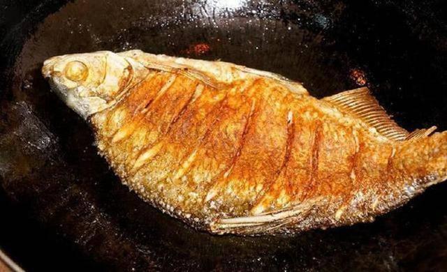 5 loại cá có khả năng biến thành độc dược, được khuyên nên ăn ít kẻo ung thư tìm đến-3
