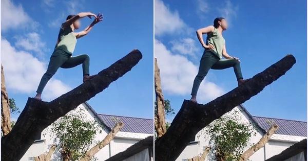 Hàng xóm hát karaoke tối ngày không dứt, chị gái leo lên tận ngọn cây quát ầm ĩ: