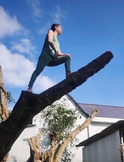 Hàng xóm hát karaoke tối ngày không dứt, chị gái leo lên tận ngọn cây quát ầm ĩ: Vùng lá me bay gì 10 cái cây bay từ hôm qua tới giờ chưa xong nữa!-2