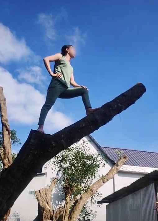 Hàng xóm hát karaoke tối ngày không dứt, chị gái leo lên tận ngọn cây quát ầm ĩ: Vùng lá me bay gì 10 cái cây bay từ hôm qua tới giờ chưa xong nữa!-1