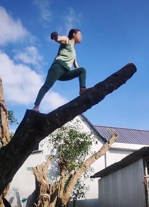 Hàng xóm hát karaoke tối ngày không dứt, chị gái leo lên tận ngọn cây quát ầm ĩ: Vùng lá me bay gì 10 cái cây bay từ hôm qua tới giờ chưa xong nữa!-3