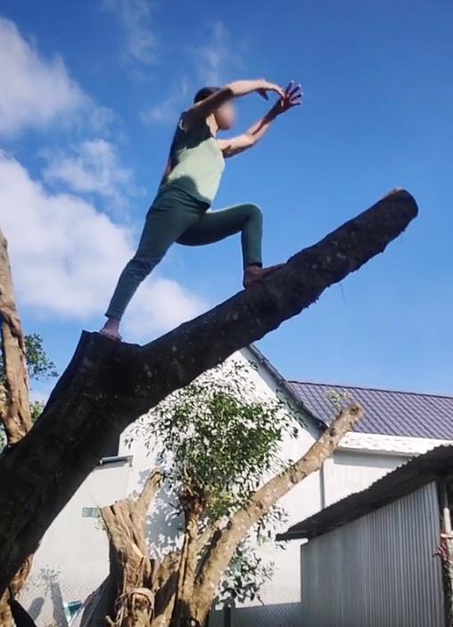 Hàng xóm hát karaoke tối ngày không dứt, chị gái leo lên tận ngọn cây quát ầm ĩ: Vùng lá me bay gì 10 cái cây bay từ hôm qua tới giờ chưa xong nữa!-4