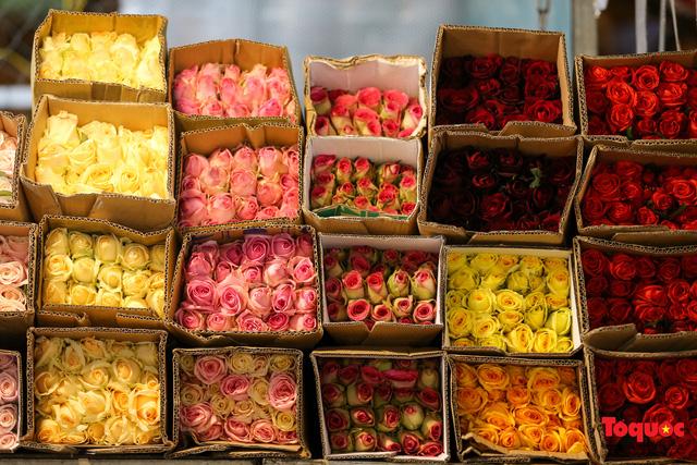 Nhộn nhịp chợ hoa đêm ngày đầu tháng Chạp-10