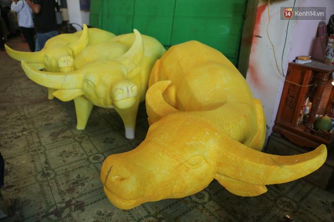Ảnh: Cận cảnh đàn trâu đồng quê Việt Nam chuẩn bị ra đường hoa Nguyễn Huệ đón Tết Tân Sửu 2021-5