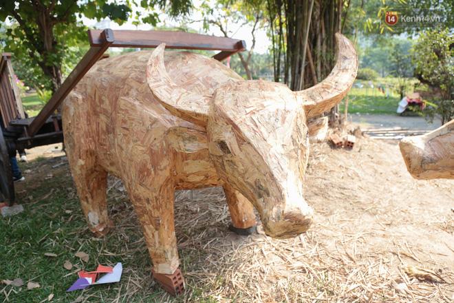 Ảnh: Cận cảnh đàn trâu đồng quê Việt Nam chuẩn bị ra đường hoa Nguyễn Huệ đón Tết Tân Sửu 2021-22