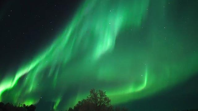 Cực quang kỳ ảo với hàng trăm sắc thái xanh lá ở Nga