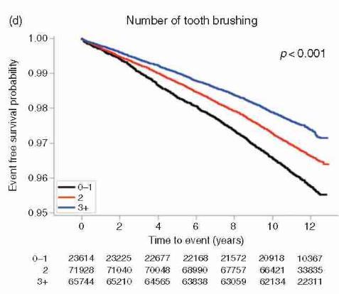 Mỗi phút lại có 1 người đột tử, sau 10 năm nghiên cứu: Đánh răng có liên quan đến bệnh tim-4