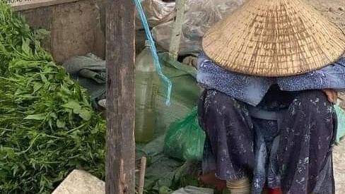 Cụ bà ngủ gục bên bó rau những ngày cuối năm ở Sài Gòn: 'Cháu mua đi, 1 bó 5k, mua 4 bó bà khuyến mãi 1 bó'