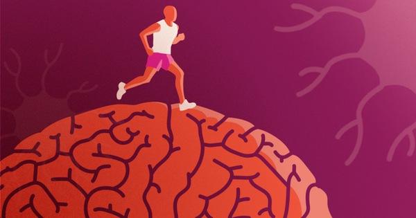 Cứ tưởng trung niên mới cần lo lắng về sức khỏe não bộ, ai ngờ thực chất lão hóa bắt đầu từ thời điểm ít ai nghĩ đến nhất!