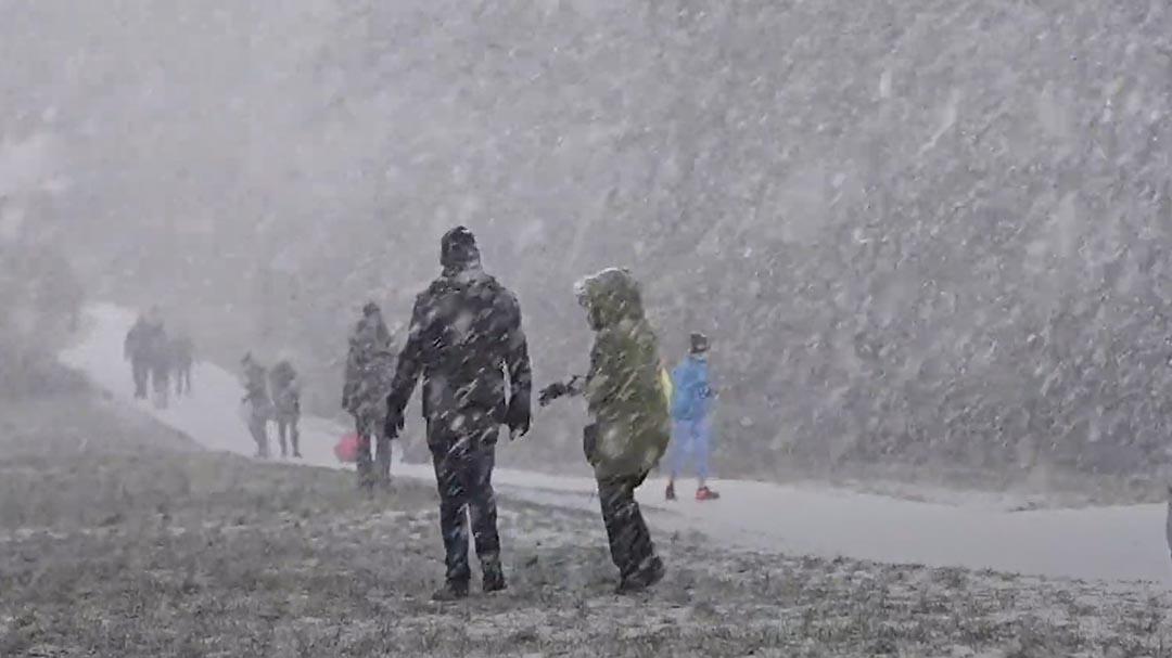 Nước Anh tê liệt vì trận bão tuyết lớn