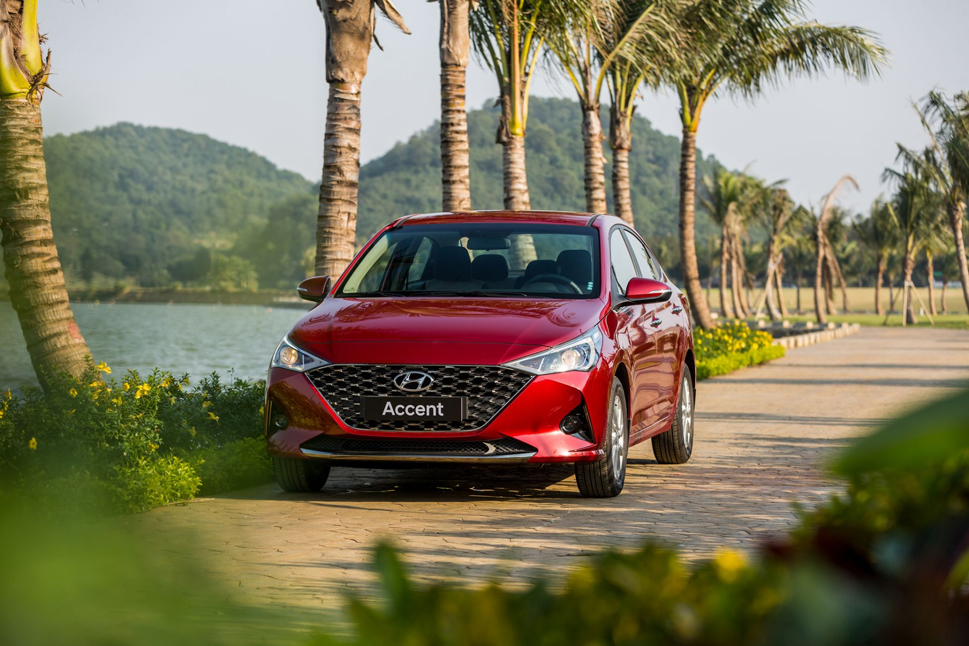 Cặp đôi Hyundai tiếp tục giúp TC MOTOR tăng trưởng trong tháng 1/2021
