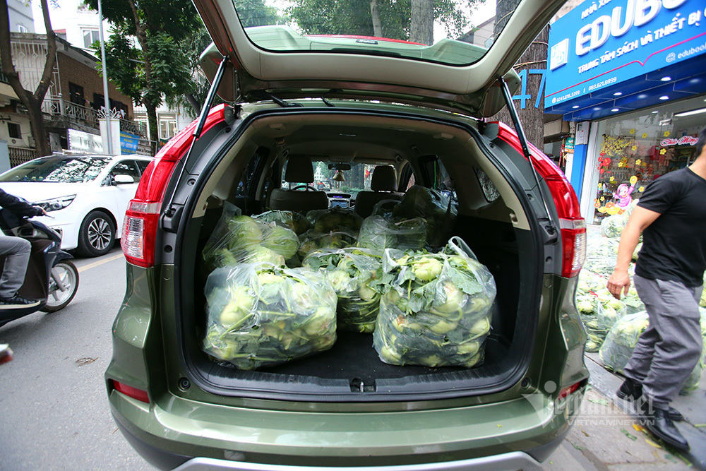 Bán 10 tấn rau/ngày, người đàn ông tiết lộ 'món lãi' chưa từng có-10