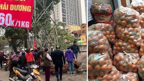 Người dân Hà Nội xếp hàng mua gà