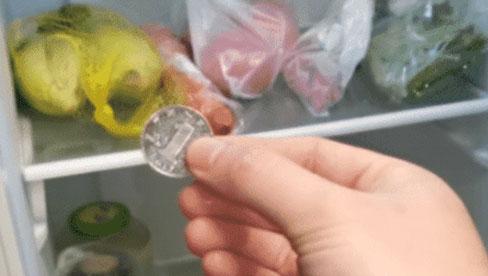Tại sao khi đi chơi xa cần bỏ đồng xu vào tủ lạnh? Đọc xong mới chợt nhận ra và nhanh chóng nhắc nhở gia đình