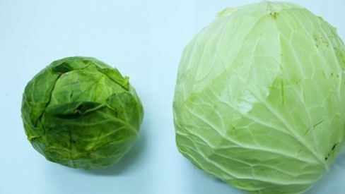 Người bán rau củ không bao hé răng cho bạn biết: 3 giây để phân biệt hàng Việt Nam - Trung Quốc