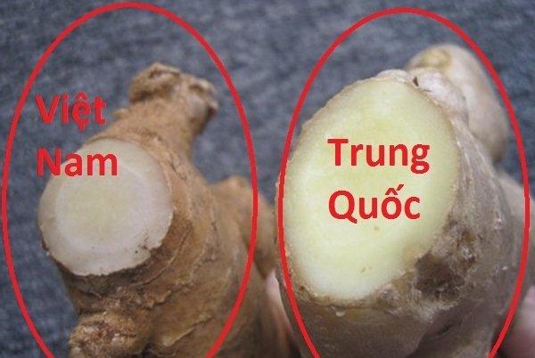 Người bán rau củ không bao hé răng cho bạn biết: 3 giây để phân biệt hàng Việt Nam - Trung Quốc-3