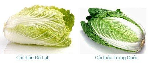 Người bán rau củ không bao hé răng cho bạn biết: 3 giây để phân biệt hàng Việt Nam - Trung Quốc-8