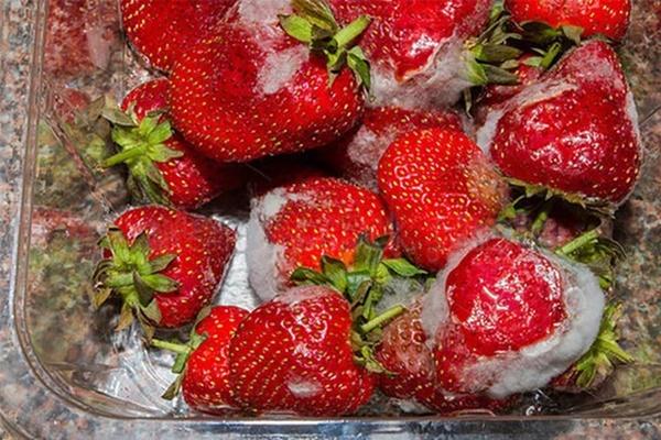 WHO cảnh báo 4 loại thực phẩm cực quen là chất gây ung thư cấp độ 1 mà bạn cần tránh xa-2