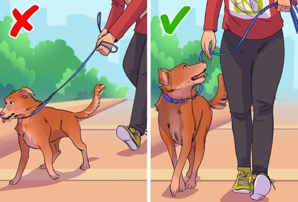 Những thói quen gây hại không ngờ khi đi bộ-7
