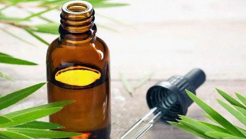Nếu dùng tinh dầu, bạn hãy đọc ngay bài viết này để tránh bị ngộ độc