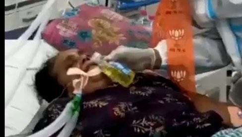 Ấn Độ: Xuất hiện clip bệnh nhân Covid-19 bị nghi ngờ được cho uống... nước tiểu bò để chữa bệnh