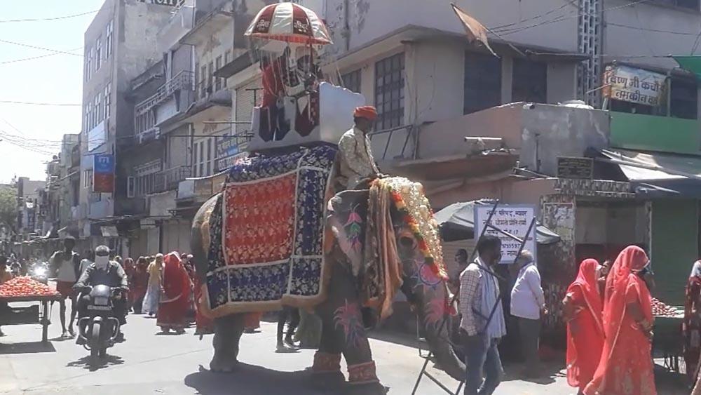 Chú rể cưỡi voi đi đón dâu ở Ấn Độ