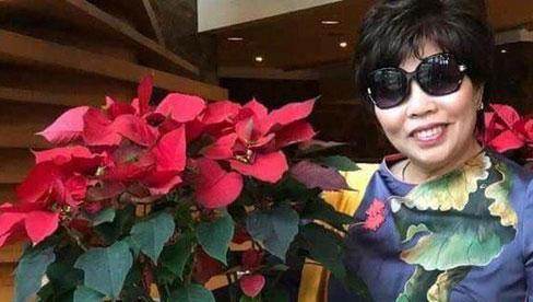 Chân dung doanh nhân Lê Thị Giàu - người khởi kiện đòi bà Phương Hằng 1000 tỷ