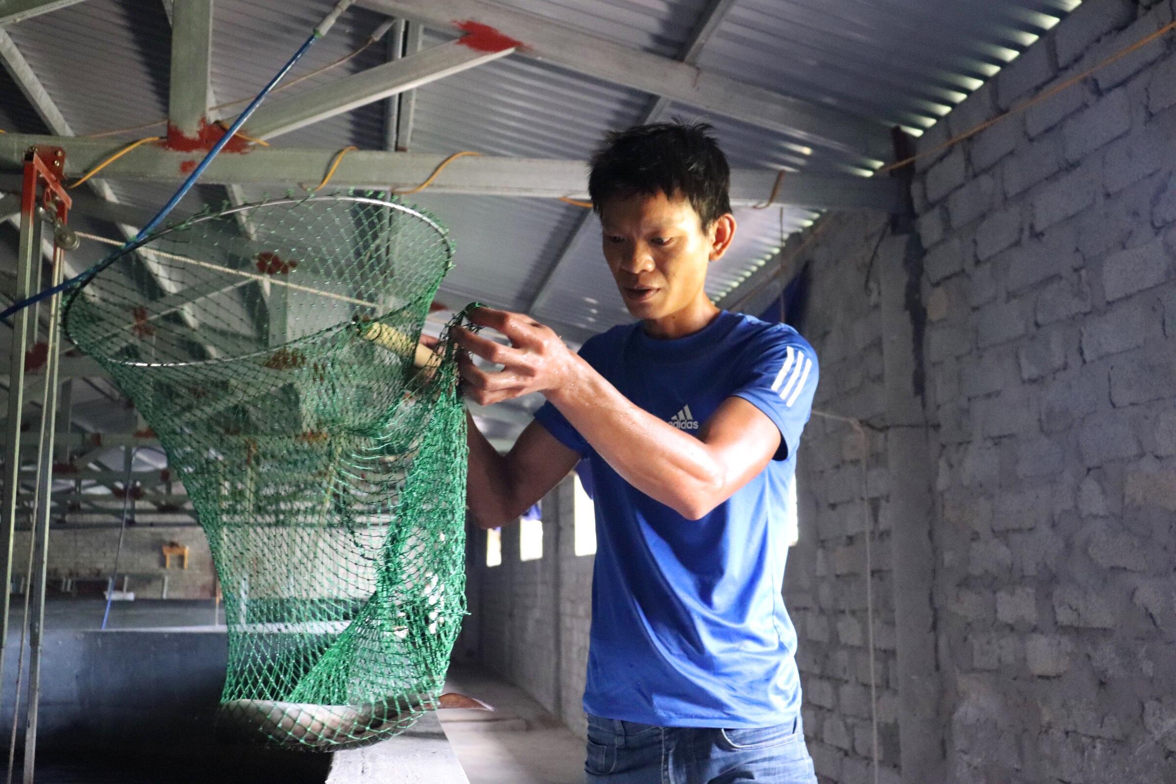 Câu chuyện khởi nghiệp của chàng kỹ sư với 4.000 con cá chình-2